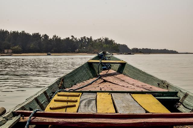 A view from a boat at Chilika lake