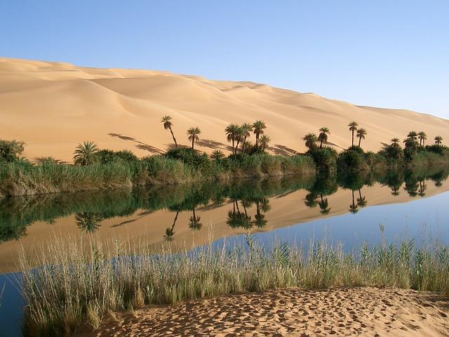 An oasis in Sahara desert